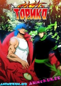 Торико ТВ / Toriko TV