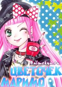 Цветочек Маримо: Легенда о маленькой воительнице / Marimo no Hana: Saikyou Butouha Shougakusei Densetsu OVA