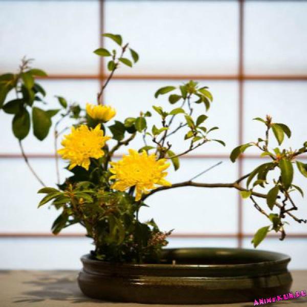 Икебана - новая жизнь цветка