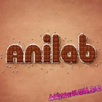Обзоры от ANILAB