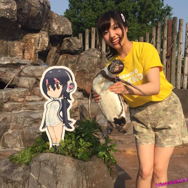 В Японии пингвин решил жить с девочкой из аниме