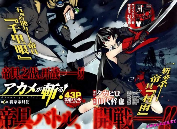 Подробно об аниме Akame ga KILL! (Убийцы Акаме!)