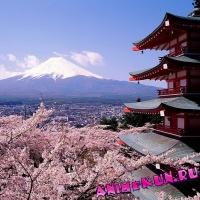 Видео: Прогулка по Киото