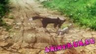 Shingeki no Bahamut: Genesis / Ярость Бахамута: Истоки