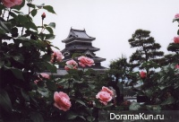 весенний фестиваль роз в японии