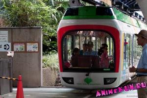 Зоопарк Уэно, Токио