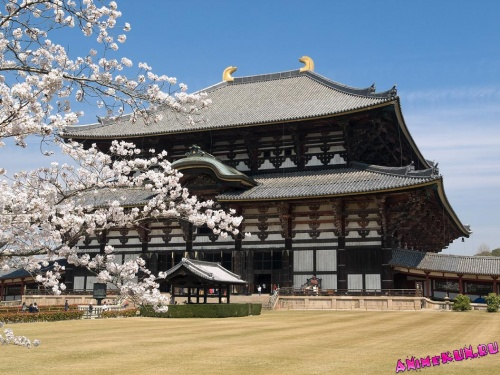 Храм Тодай-дзи