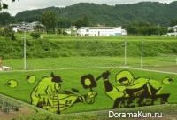 Япония, фермы