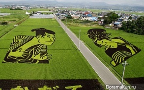 японские фермы