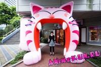 Cat Livin
