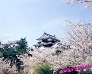 Замок Мацуя