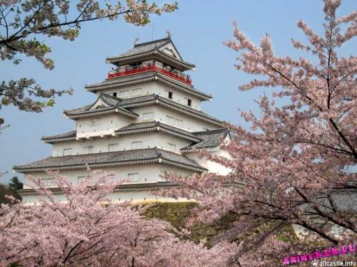 Замок Айдзу-Вакамацу