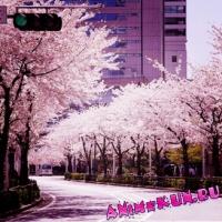Флора и фауна японии