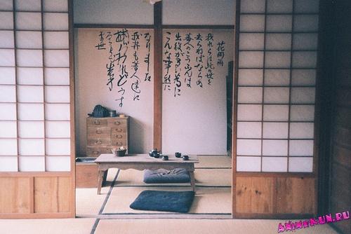 Чистоплотность японцев
