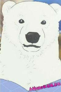 Кафе У Белого Медведя-Белый Медведь