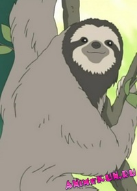 Кафе У Белого Медведя - Ленивец