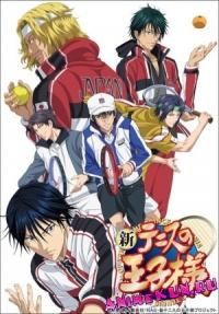 Принц тенниса OVA-6