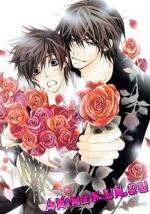 Sekai-ichi Hatsukoi / Лучшая в мире первая любовь OVA