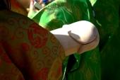 Фестиваль пениса