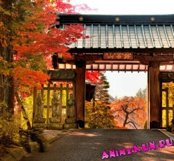 Япония. Фотоподборка 16