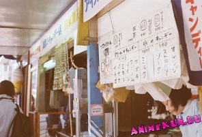 Виды Японии. Галерея. 14