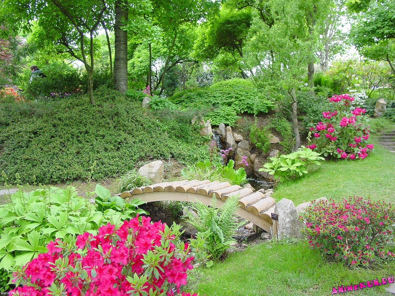 Сады у жилого дома