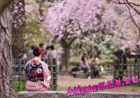 ТОП-10: причудливые японские традиции
