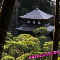 Гинкакудзи (Серебряный павильон).