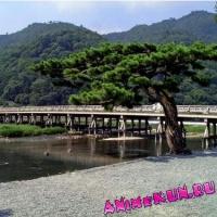 Мост Тогэцукё.