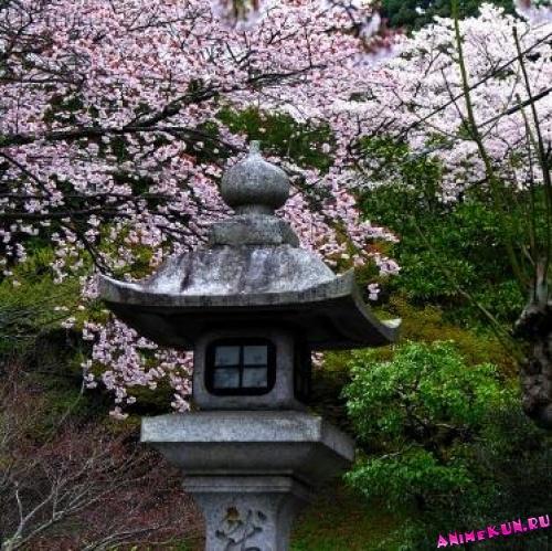 Район Тэцугаку. Философская тропа.