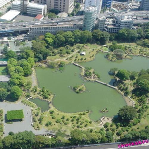 Сад Кю Сиба Рикю.