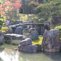 Сады замка Нидзё.