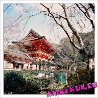 Храм Камигамо.