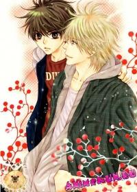 Больше, чем возлюбленные 2 / Super Lovers 2