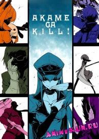 Убийца Акаме! / Akame ga Kiru!