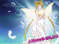Bishoujo Senshi Sailor Moon (Hashimoto Ushio - Princess Moon)