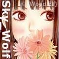 {Sky_Wolf}