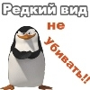 ПингвинЫ_КуряТ™