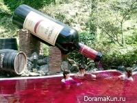 Ванна из красного вина