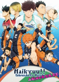 Haikyuu!! Shousha to Haisha