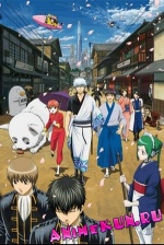 Gintama (New Series) / Гинтама ТВ-2